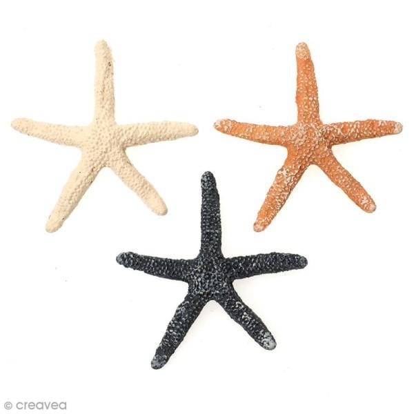 Etoiles de mer déco - 6 cm - 3 pcs - Photo n°1