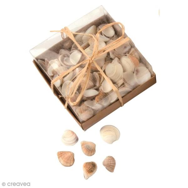 Coquillages Décoratifs - 100 g - Photo n°1