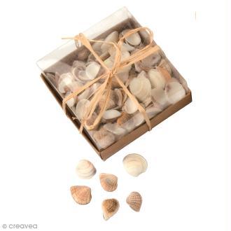Coquillages Décoratifs - 100 g