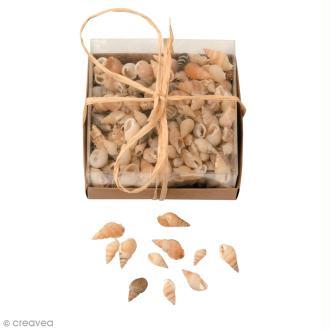 Coquillages Décoratifs - 90 g