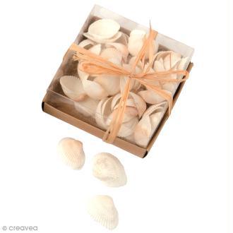 Coquillages Décoratifs - 110 g