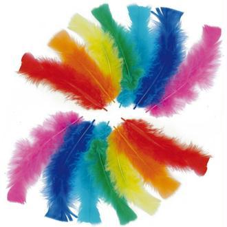 Plumes de dinde Multicolore 25 gr
