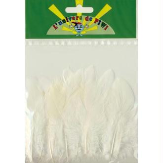 Plumes de coq Blanc 7 cm x 20