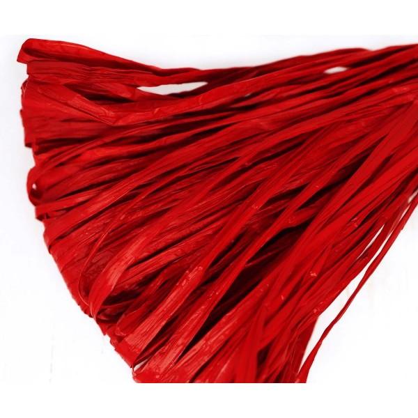 5m Rouge Grenat Mat Plat Raphia Bande en Nylon de Broderie à la Main en Fil d'Orfèvrerie Luneville T - Photo n°1
