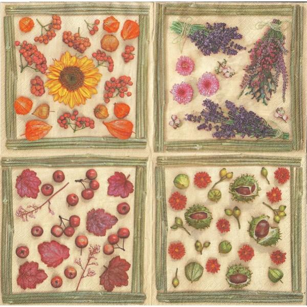 4 Serviettes en papier Fleurs Séchées Format Lunch Collage Decopatch SDOG-017101 Pol-Mak - Photo n°2
