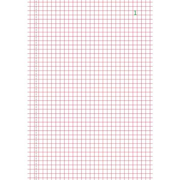 Manifold quadrillage 5x5 21x14.8 - Tripli - Photo n°2