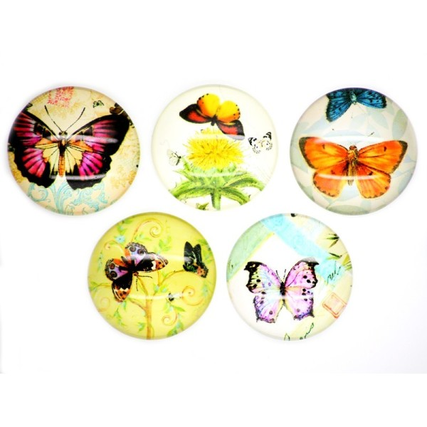 5x Cabochon Imprimé Papillon 25mm - Photo n°2