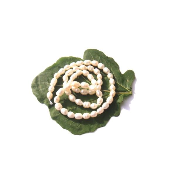 Perles de Culture  : 20 perles irrégulières 5/6 MM de longueur x 4/5 MM de diamètre - Photo n°1