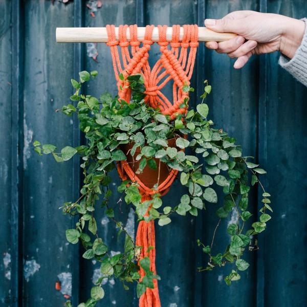 Fil DMC coton recyclé Nova Vita - Macramé, Crochet, Tricot - 250 g - Photo n°2