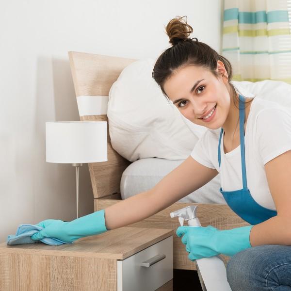 Désinfectant professionnel Elispray 3 en 1 -750 ml - Photo n°2
