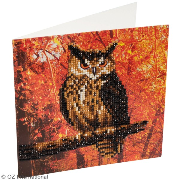 Kit Crystal Art - Carte broderie diamant - Hibou - 18 x 18 cm - Photo n°2