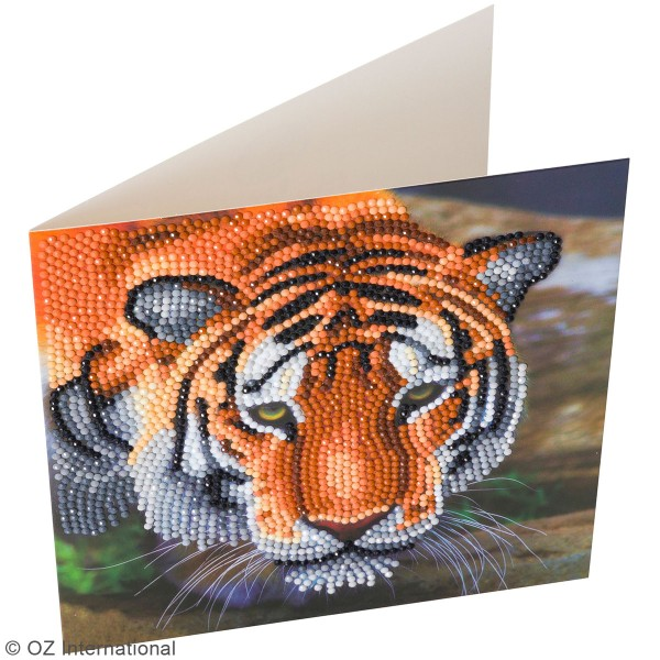 Kit Crystal Art - Carte broderie diamant - Tigre - 18 x 18 cm - Photo n°2