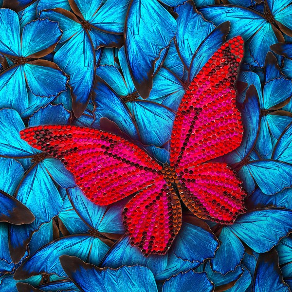 Kit Crystal Art - Carte broderie diamant - Papillon - 18 x 18 cm - Photo n°1