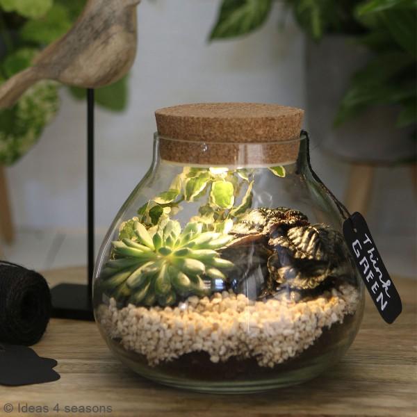 Vase Terrarium avec Led - 15 cm de diamètre - Photo n°2