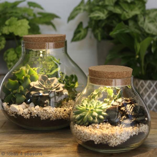 Vase Terrarium avec Led - 15 cm de diamètre - Photo n°4