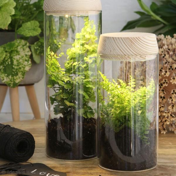 Vase Cylindrique - Terrarium avec LED - 8 x 18 cm - Photo n°3