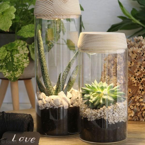Vase Cylindrique - Terrarium avec LED - 8 x 18 cm - Photo n°4