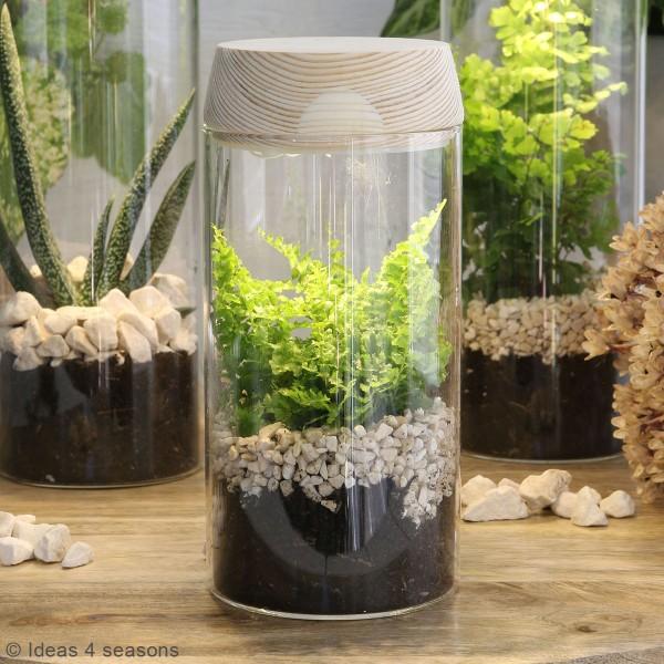 Vase Cylindrique - Terrarium avec LED - 8 x 18 cm - Photo n°6