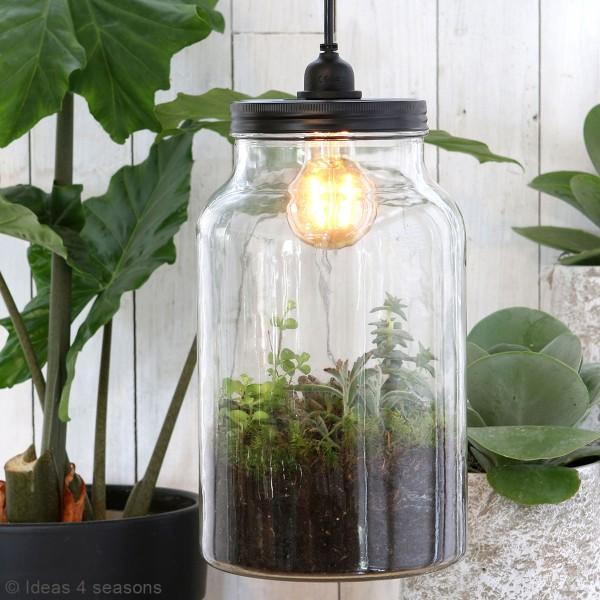 Vase Terrarium avec ampoule - 17,5 x 30 cm - Photo n°2