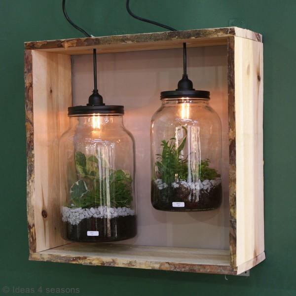 Vase Terrarium avec ampoule - 17,5 x 30 cm - Photo n°4
