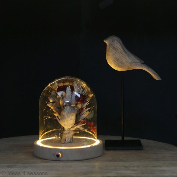 Cloche en verre avec socle lumineux - 10 x 10,5 cm - Photo n°2