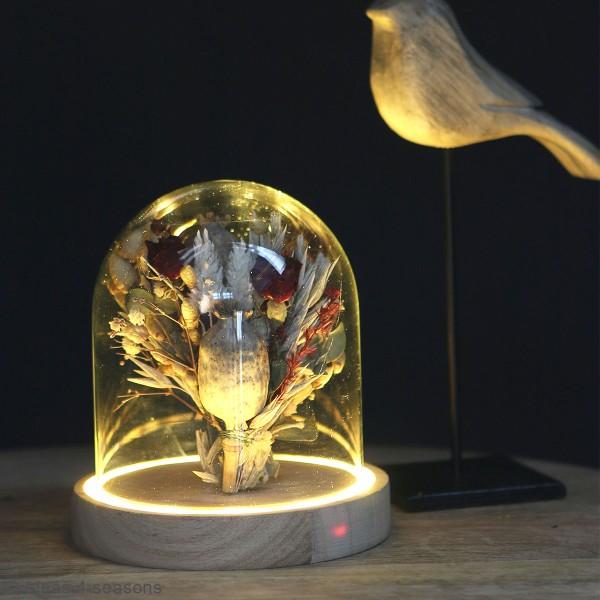 Cloche en verre avec socle lumineux - 12 x 13,5 cm - Photo n°2