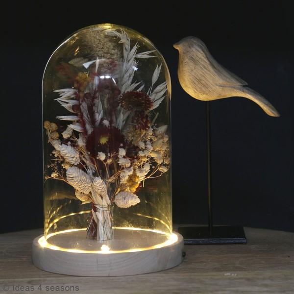 Cloche en verre avec socle lumineux - 21,5 x 14 cm - Photo n°2
