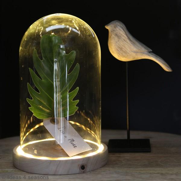 Cloche en verre avec socle lumineux - 21,5 x 14 cm - Photo n°4