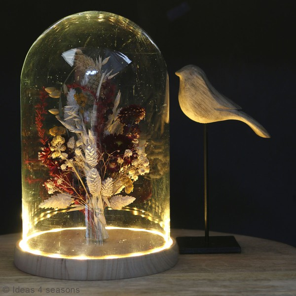 Cloche en verre avec socle lumineux - 17 x 25,5 cm - Photo n°2