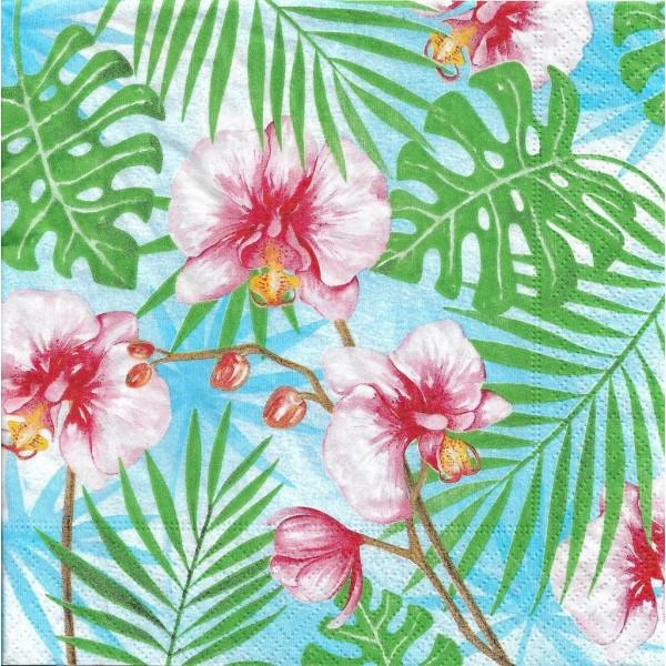 4 Serviettes en papier Orchidées Plantes Tropicales Format Lunch Decoupage 200451 Paper+Design - Photo n°1