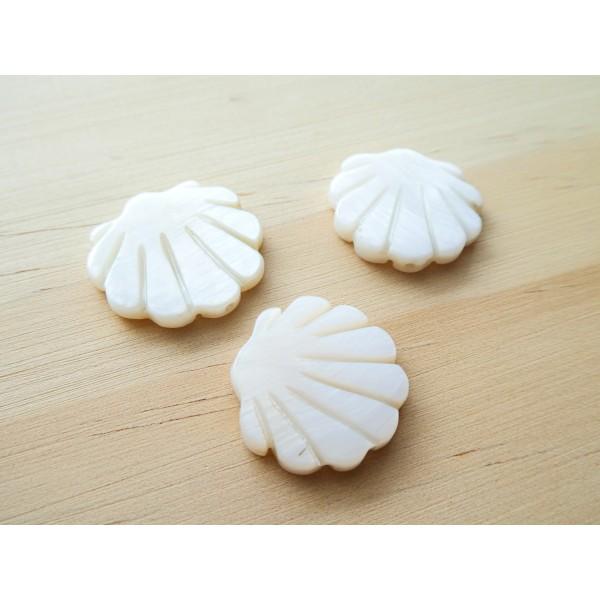 2 Perles Coquillage 19*20mm en nacre - Photo n°2