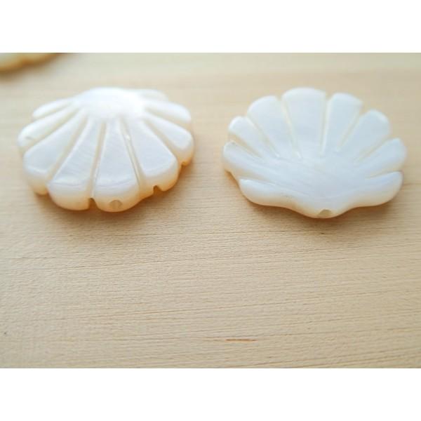 2 Perles Coquillage 19*20mm en nacre - Photo n°3
