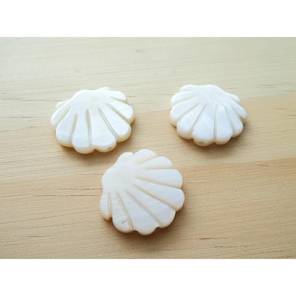2 Perles Coquillage 19*20mm en nacre - Photo n°1