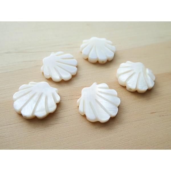 2 Perles Coquillage 15*15mm en nacre - Photo n°2