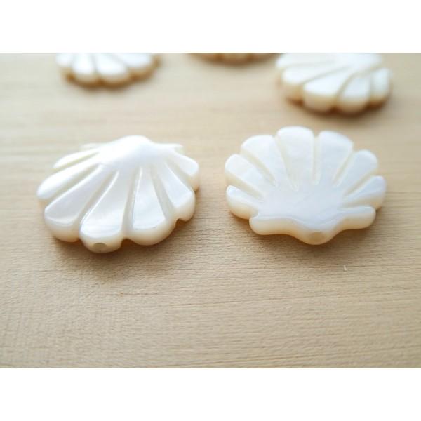 2 Perles Coquillage 15*15mm en nacre - Photo n°3