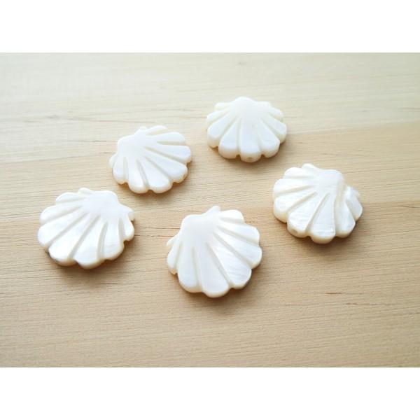 2 Perles Coquillage 15*15mm en nacre - Photo n°1