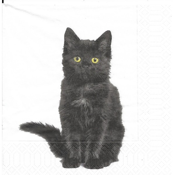 4 Serviettes en papier Bio Chat Noir Format Lunch Decoupage Decopatch 191963 Paper+Design - Photo n°1