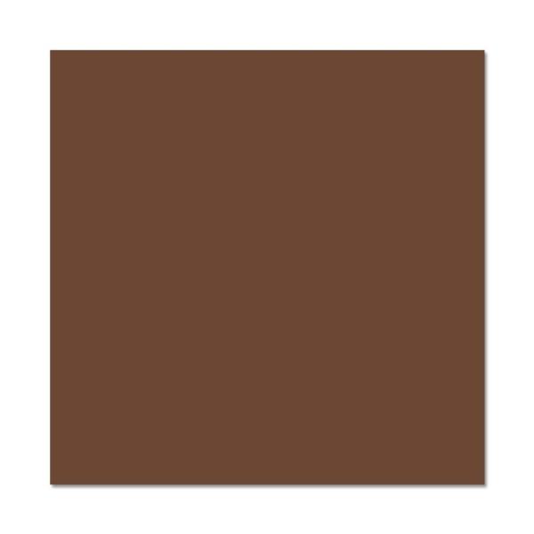 Papier Pollen carte 160 x 160 Cacao x 25 - Photo n°1