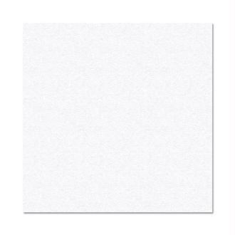 Papier Pollen carte 160 x 160 Blanc irisé x 25