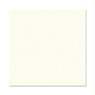 Papier Pollen carte 160 x 160 Ivoire irisé x 25