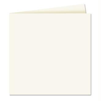 Papier Pollen carte double 160 x 160 Blanc x 25