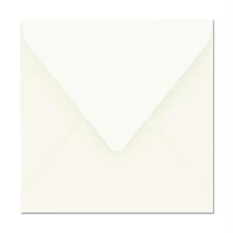 Enveloppe Pollen 165 x 165 Blanc x 20