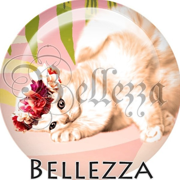 Cabochon, chat blanc, animaux divers, animaux, plusieurs tailles disponibles - Photo n°1