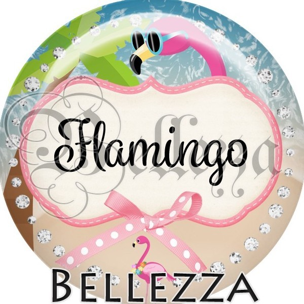 Cabochon, flamingo, flamant rose, animaux, plusieurs tailles disponibles - Photo n°1