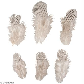 Plumes décoratives - Zébrées - 8 à 12 cm - 6 pcs
