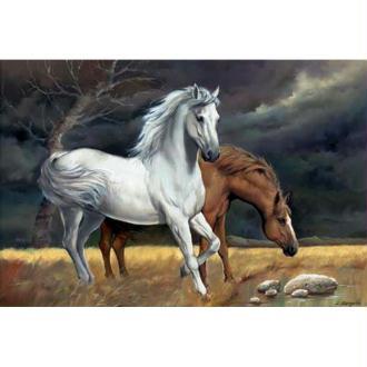 Image 3D Animaux - 2 chevaux 30 x 40