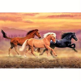 Image 3D Animaux - 3 chevaux au galop 30 x 40