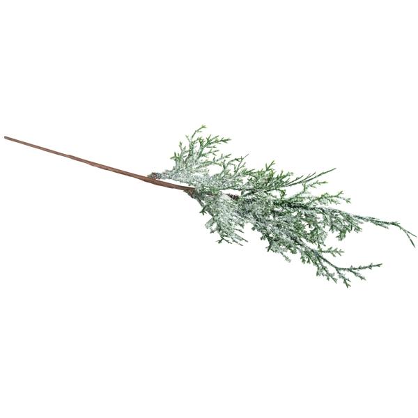 Branche de thuya - Enneigée - 37 cm - Photo n°1