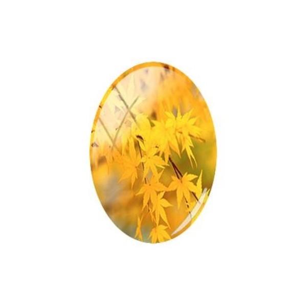 1 cabochon ovale en verre 18 x 25 mm FEUILLE AUTOMNE - Photo n°1