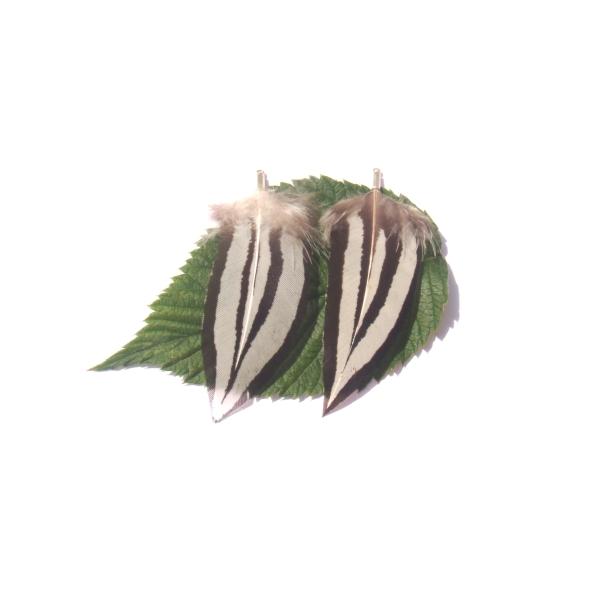 Pendentifs plumes Faisan Argenté : Paire 6 CM de hauteur environ x 3 CM - Photo n°2